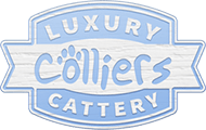 Colliers Cattery